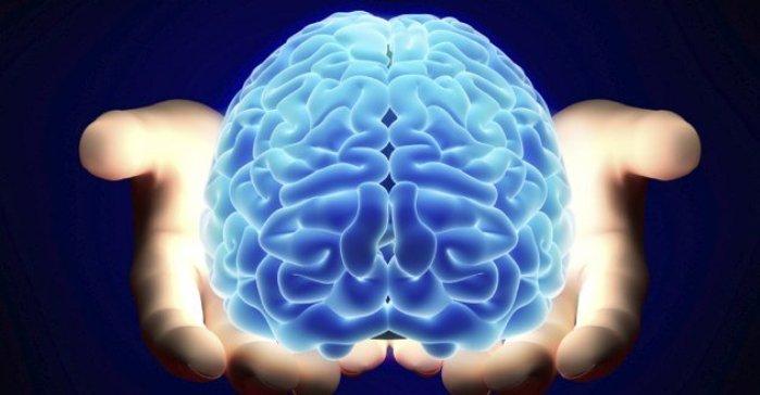 چند درصد از مغز در سن 80 سالگی از بین می رود؟!