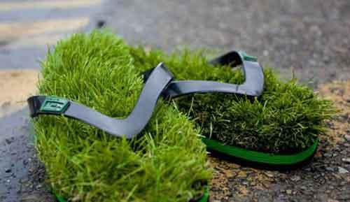 ایده ها و ابتکاراتی برای سفره هفت سین - ایده های سبزه عید 95 - سبزه عید - مدل سبزه عید