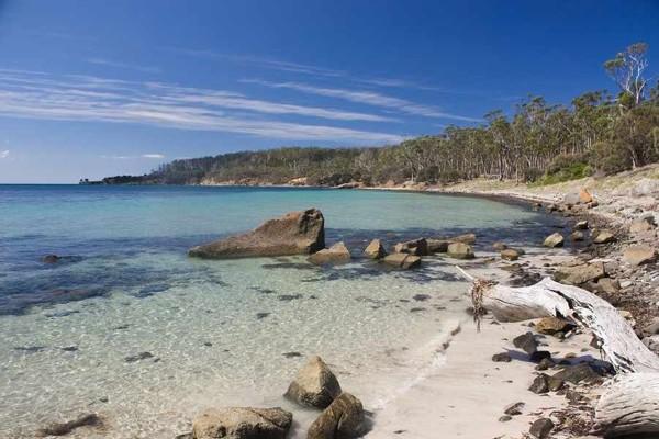 Australia(5)