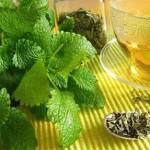 بهترین داروها گیاهی برای رفلاکس معده