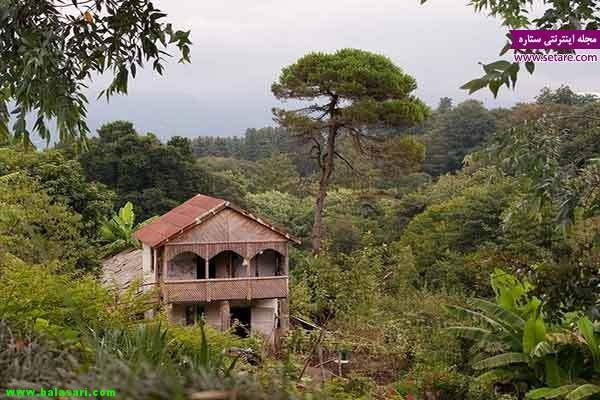 گرجستان، باغ گیاه شناسی باتومی، سفر ، شهر باتومی