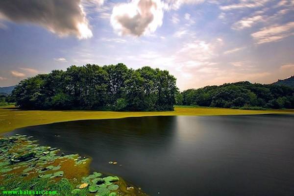 Sustan-pond-4