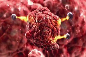 اسرار ناگفته درباره  نانوتکنولوژی