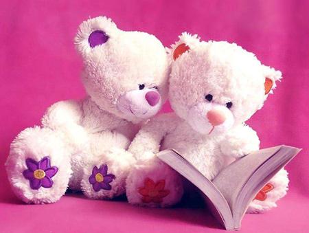 Valentine bears (5)
