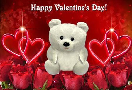 Valentine bears (8)