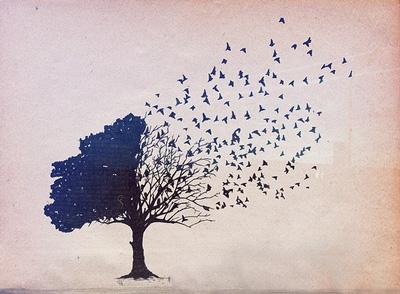 جملات الهام بخش و زیبا برای زندگی, مطالب آموزنده درباره زندگی